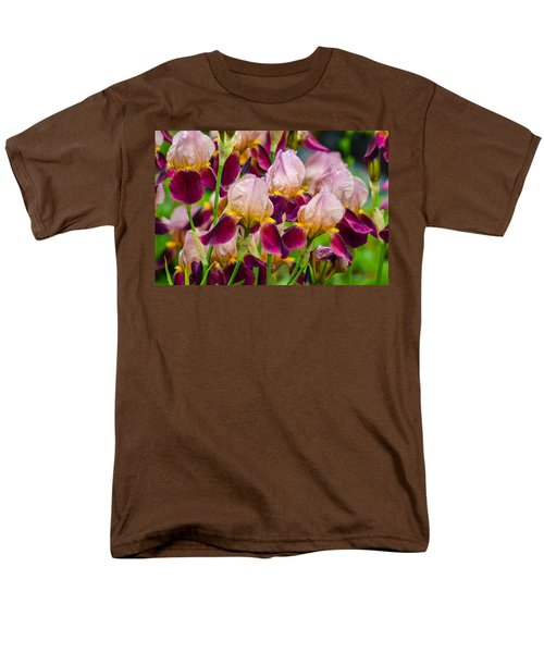 Tricolored Irisses Men's T-Shirt  (Regular Fit) by Rainer Kersten