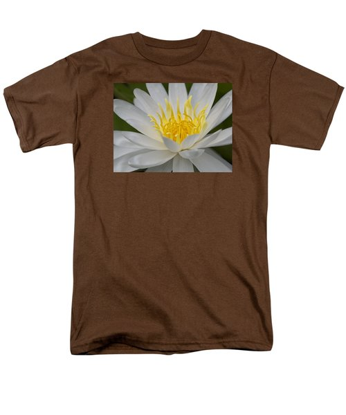 Water Lily Men's T-Shirt  (Regular Fit)