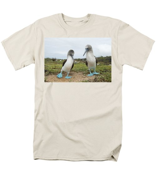 Blue-footed Booby Pair Courting Men's T-Shirt  (Regular Fit) by Tui De Roy