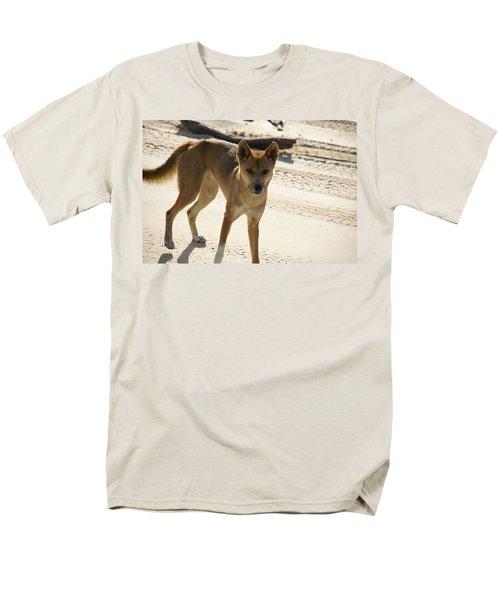 Dingo Men's T-Shirt  (Regular Fit) by Carol Ailles