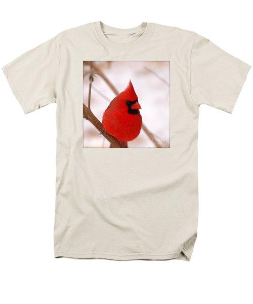Big Red  Cardinal Bird In Snow Men's T-Shirt  (Regular Fit)