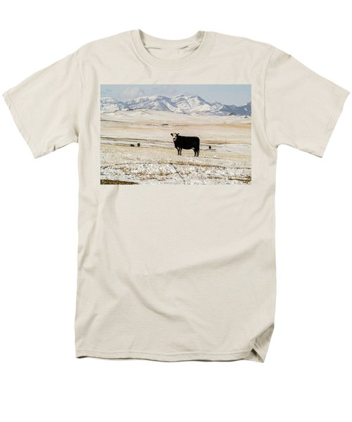 Black Baldy Cows Men's T-Shirt  (Regular Fit) by Sue Smith
