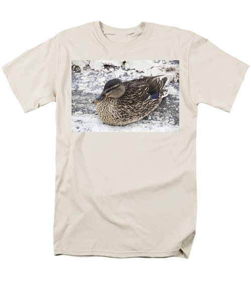 Duck Setting On A Winter Road Men's T-Shirt  (Regular Fit)