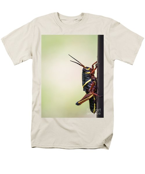 Giant Eastern Lubber Grasshopper Men's T-Shirt  (Regular Fit) by Edward Fielding