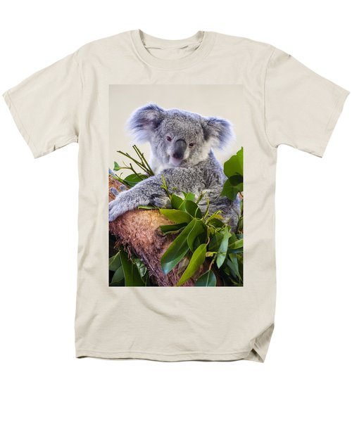Koala On Top Of A Tree Men's T-Shirt  (Regular Fit) by Chris Flees