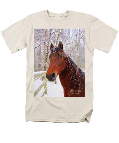 Majestic Morgan Horse Men's T-Shirt  (Regular Fit) by Elizabeth Dow