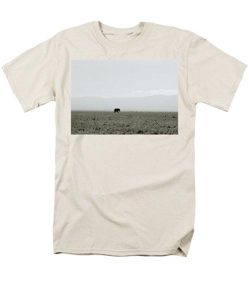Ngorongoro Crater Men's T-Shirt  (Regular Fit) by Shaun Higson