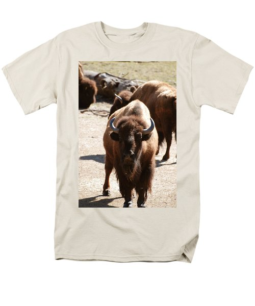 North American Bison Men's T-Shirt  (Regular Fit) by DejaVu Designs