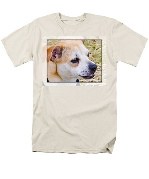 Pets Men's T-Shirt  (Regular Fit) by Walter Herrit