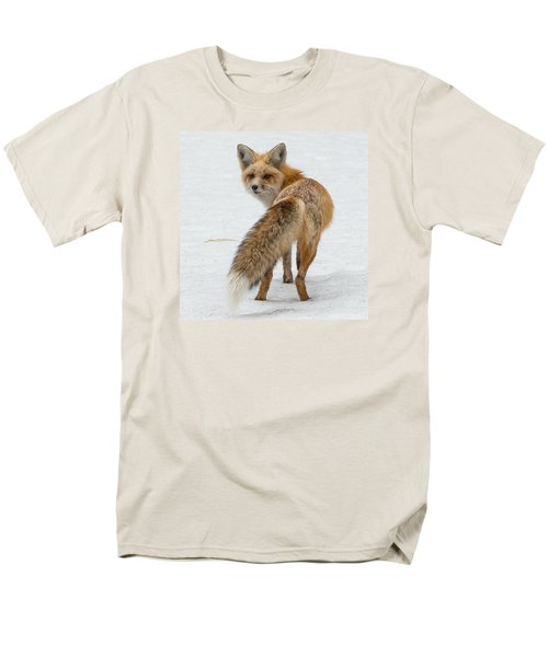 Red Fox Of Silver Gate Men's T-Shirt  (Regular Fit) by Yeates Photography