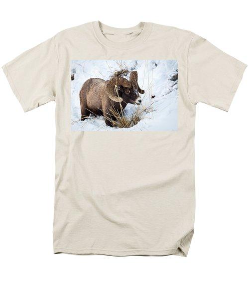 Rocky Mountain Bighorn Sheep Men's T-Shirt  (Regular Fit)