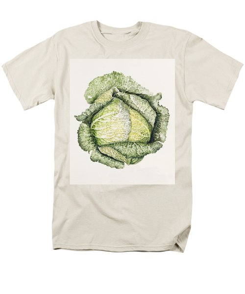 Savoy Cabbage  Men's T-Shirt  (Regular Fit) by Alison Cooper
