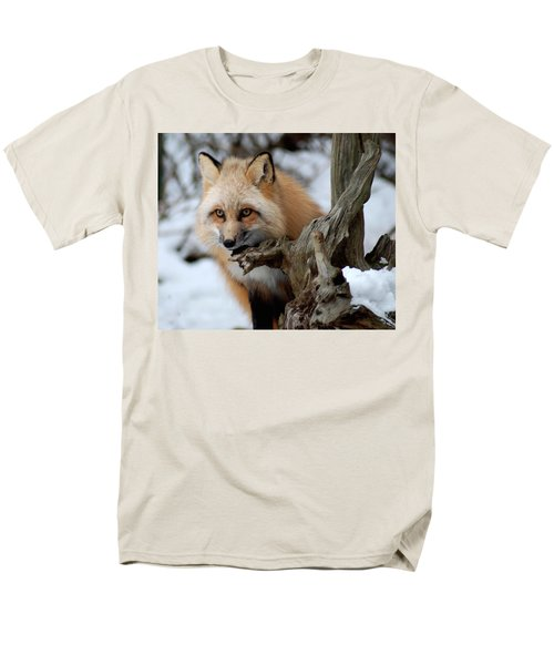Stunning Sierra Men's T-Shirt  (Regular Fit) by Richard Bryce and Family