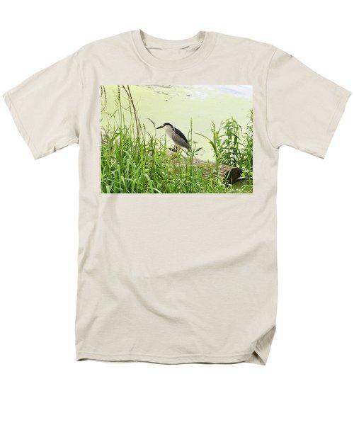 The Black-crowned Night Heron Men's T-Shirt  (Regular Fit) by Verana Stark