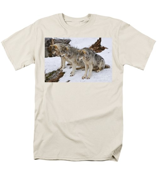 Three Kings Men's T-Shirt  (Regular Fit) by Wolves Only