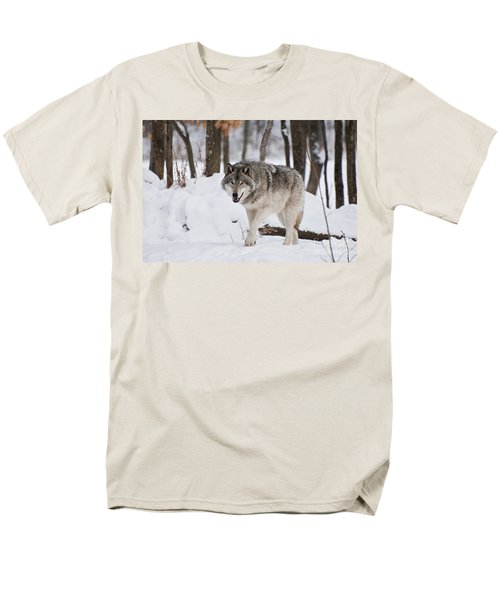 Men's T-Shirt  (Regular Fit) featuring the photograph Timber Wolf In Winter Forest by Wolves Only