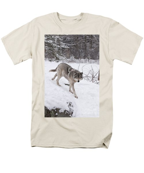 Men's T-Shirt  (Regular Fit) featuring the photograph Timber Wolf  by Wolves Only