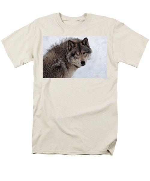 Men's T-Shirt  (Regular Fit) featuring the photograph Timberwolf At Rest by Bianca Nadeau