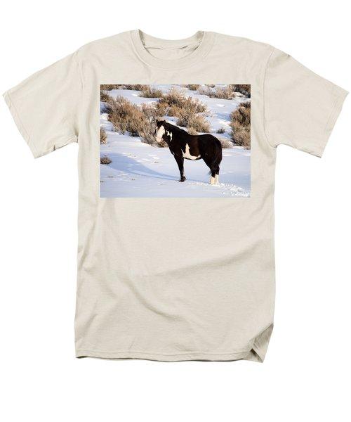 Wild Horse Stallion Men's T-Shirt  (Regular Fit)
