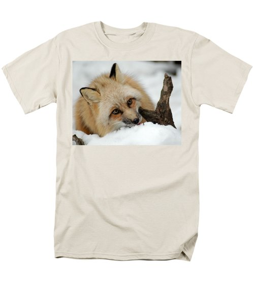 Winter Fox 2 Men's T-Shirt  (Regular Fit) by Richard Bryce and Family