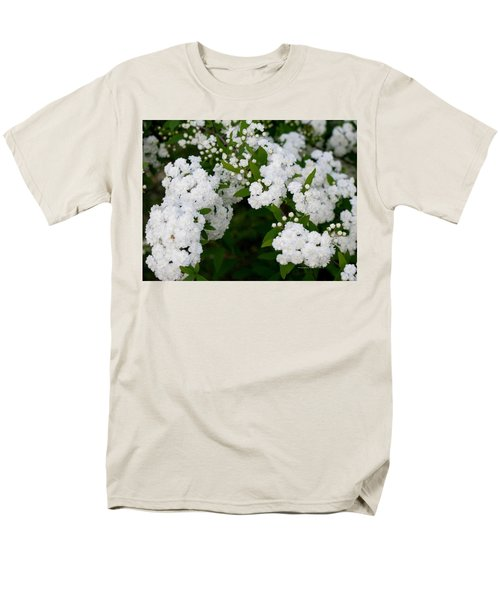 Spirea Blooms Men's T-Shirt  (Regular Fit) by Maria Urso