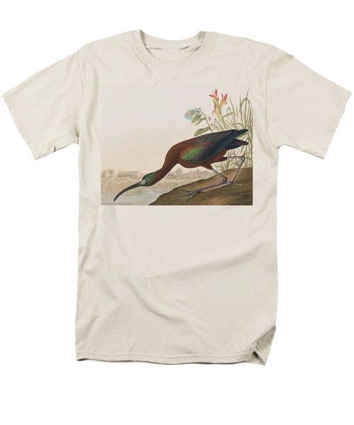 Glossy Ibis Men's T-Shirt  (Regular Fit) by John James Audubon