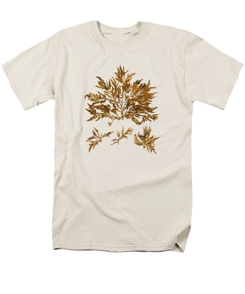 Men's T-Shirt  (Regular Fit) featuring the mixed media Brown Seaweed Marine Art Chylocladia Clavellosa by Christina Rollo