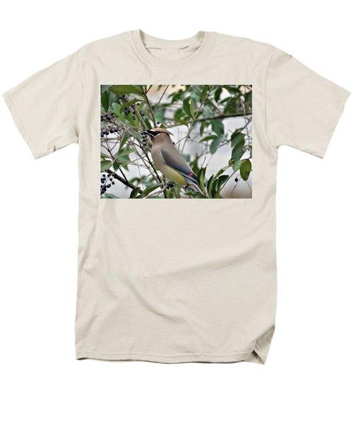 Cedar Waxwing 3 Men's T-Shirt  (Regular Fit) by Kathy Long