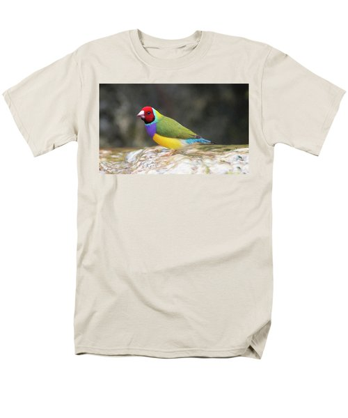 Colorful Lady Gulian Finch  Men's T-Shirt  (Regular Fit) by Penny Lisowski