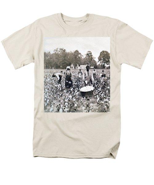 Georgia Cotton Field - C 1898 Men's T-Shirt  (Regular Fit) by International  Images