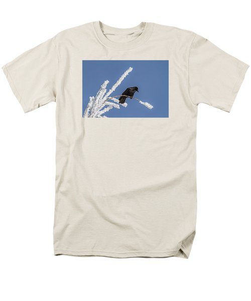 Hoarfrost And The Crow Men's T-Shirt  (Regular Fit) by Alana Thrower
