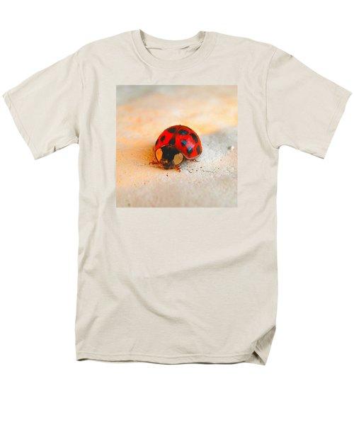 Lady Bug 2 Men's T-Shirt  (Regular Fit) by John King