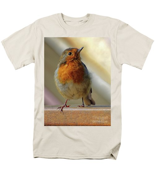 Little Robin Redbreast Men's T-Shirt  (Regular Fit)