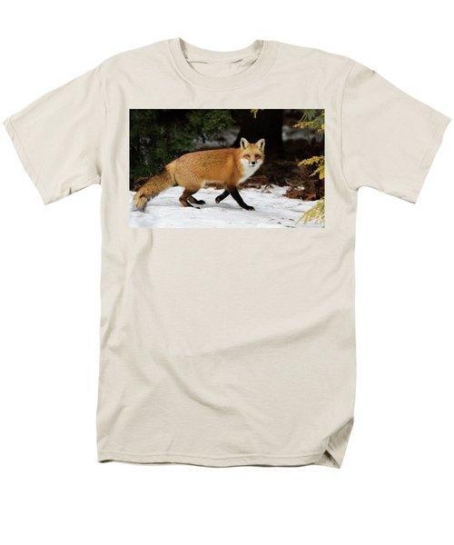 Men's T-Shirt  (Regular Fit) featuring the photograph Mr Fox by Mircea Costina Photography