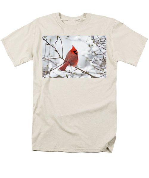 Northern Cardinal - D001540 Men's T-Shirt  (Regular Fit) by Daniel Dempster