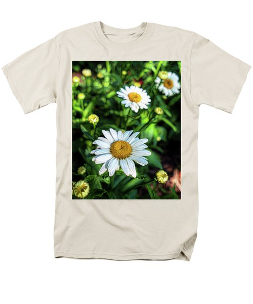 Shasta Daisy Men's T-Shirt  (Regular Fit) by Robert FERD Frank