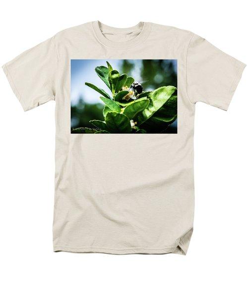 Sweet Bee Men's T-Shirt  (Regular Fit)