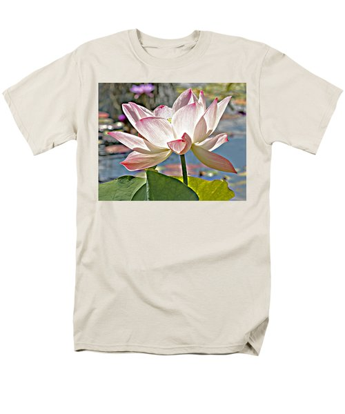 Water Lily Men's T-Shirt  (Regular Fit) by Catherine Alfidi