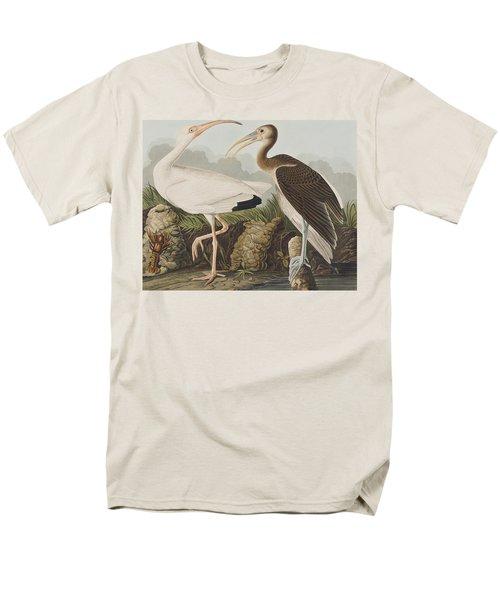 White Ibis Men's T-Shirt  (Regular Fit) by John James Audubon