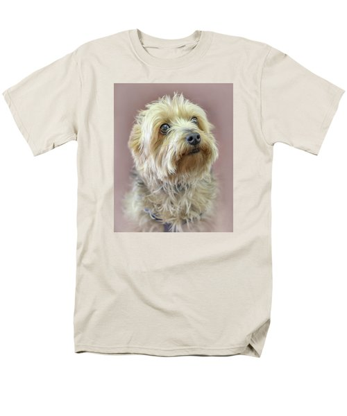 Men's T-Shirt  (Regular Fit) featuring the photograph Yorkshire Terrier by Marion Johnson