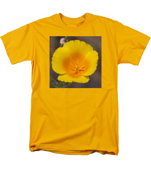 California Sunshine Men's T-Shirt  (Regular Fit) by Caitlyn  Grasso