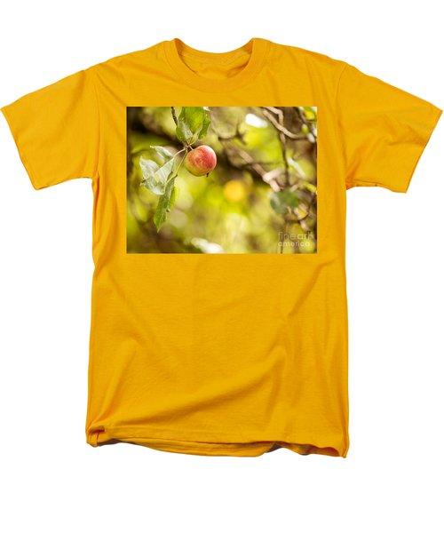Autumn Apple Men's T-Shirt  (Regular Fit) by Matt Malloy
