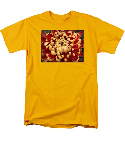 Chrysanthemum In Full Bloom Men's T-Shirt  (Regular Fit)
