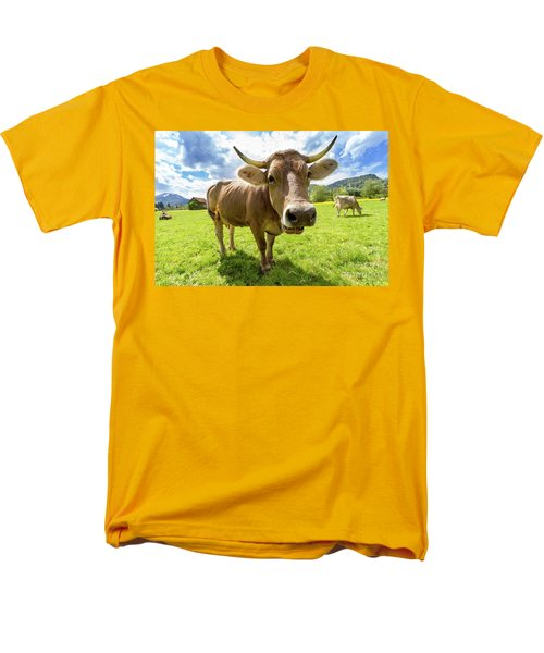 Men's T-Shirt  (Regular Fit) featuring the photograph Cow In Meadow by MGL Meiklejohn Graphics Licensing