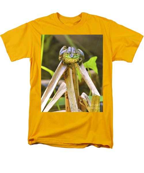 Sitting On Top Of The World Men's T-Shirt  (Regular Fit) by Debbie Stahre