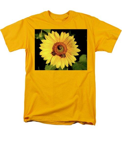 Sunflower And Bees Men's T-Shirt  (Regular Fit) by Nancy Landry