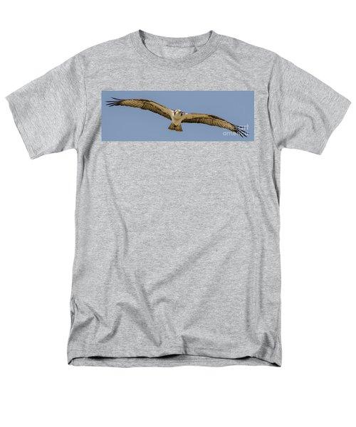 Osprey In Flight Men's T-Shirt  (Regular Fit) by Dale Powell