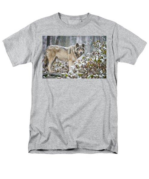 Timber Wolf Men's T-Shirt  (Regular Fit) by Michael Cummings