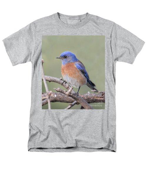 Blue Bird At Sedona Men's T-Shirt  (Regular Fit) by Debbie Hart