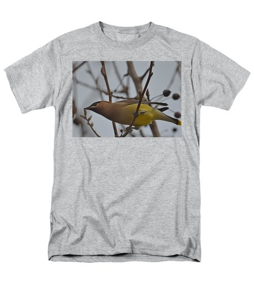 Men's T-Shirt  (Regular Fit) featuring the photograph Cedar Waxwing Feasting In Foggy Cherry Tree by Jeff at JSJ Photography